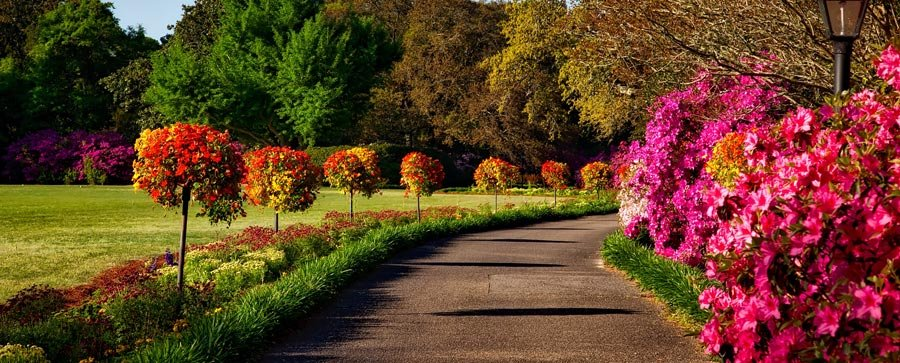 Landscaping for Seasonal Color – Storrs CT